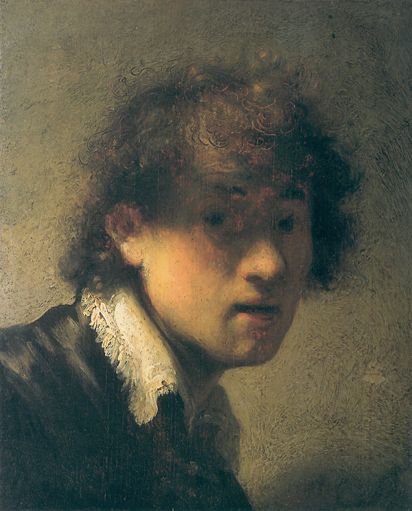johannes vermeer self portrait